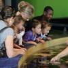 Two Oceans Aquarium, V & A Waterfront, Cape Town, South Africa: I love the enthralled look on these kids' faces at the touching pool