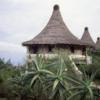 Lake Manyara Serena Lodge
