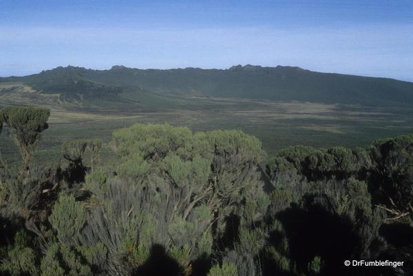 mt-kilimanjaro-037