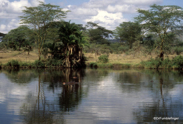 1999 Tanzania Serengetti 020