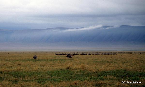 1999 Tanzania 006. Ngorongoro Crater