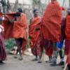 Maasai boma, Tanzania.: About high enough to slam dunk a basketball, I think