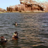 Snorkeling at the Sea Lion Rookery, Los Islotes, Sea of Cortez