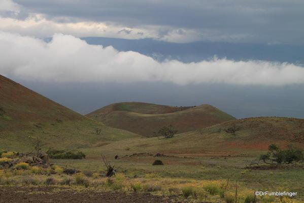 Kohala-Hawaii-062