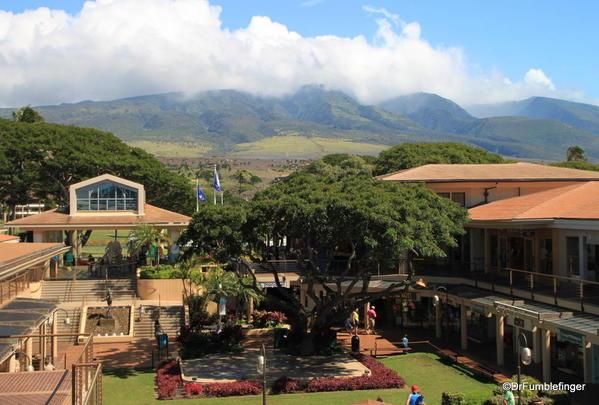 West-Maui-2013-045-Whaler's Village