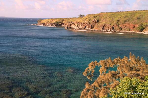 West-Maui-2013-081-Honolua Bay