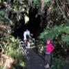 Entry to the Thurston Lava Tube, Volcanoes National Park