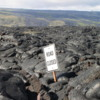 """Road Closed"", Chain of Craters Road, Volcanoes National Park: I just love the irony of this photo!"