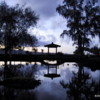 Hilo -- Sunset on pond, Lili'uokalani Park