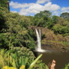 Hilo -- Rainbow Falls: A beautiful waterfall in a beautiful setting, on the northern outskirts of Hilo