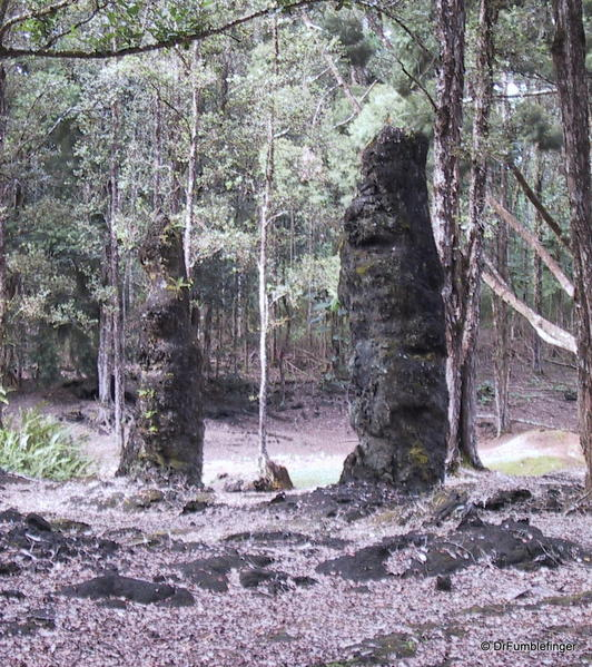 hilo-2011-019