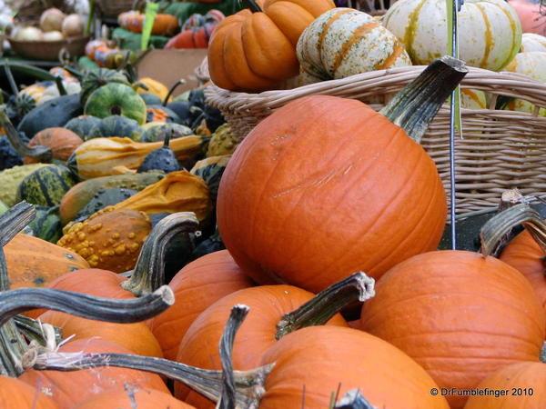 042 Oct 31 Ottawa-Byward Market