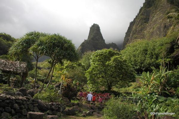 Central Maui 2013 005