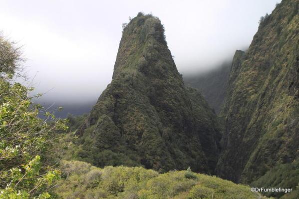Central Maui 2013 007