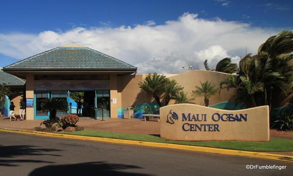 Central Maui 2013 015