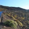 Road uphill, Haleakala National Park