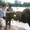 Dr Thompson, mahout and elephant in Pinnawala, Sri Lanka