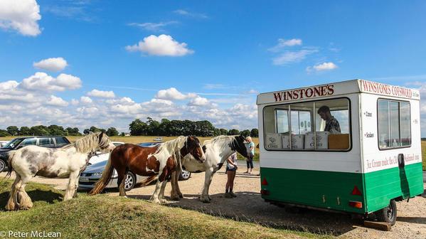 8 - Winstones ice cream horses-