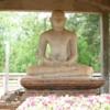 Anuradhapura -- Close-up of Samadhi Buddah