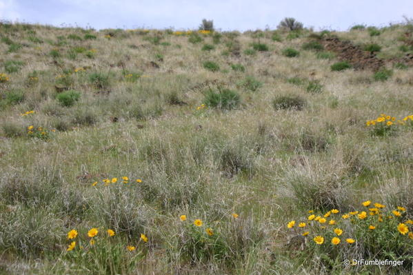 Yakima-Rim-trail-2001-003