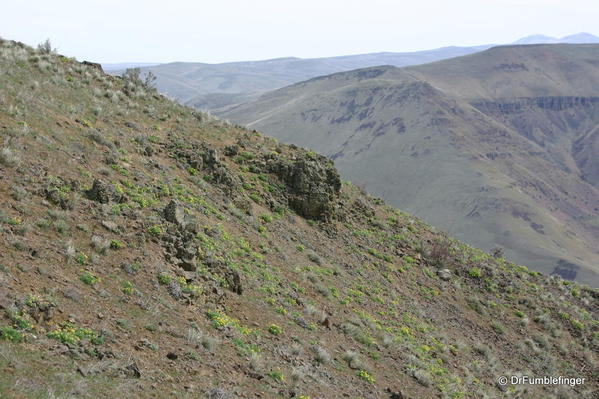 Yakima-Rim-trail-2001-016