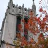 Seattle -- University of Washington Fall Colors
