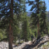 Great Basin National Park -- Bristlecone Trail: An excellent quality trail through the beautiful forest on the slopes of this park.