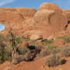 Arches National Park -- North & South Windows