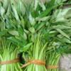 Leafy green.