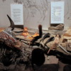 Head-Smashed-In-Buffalo Jump Interpretive Center: Some of the many uses of the buffalo to Natives, such as decoration and utensils