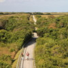 Tram tour, view from Observation Tower, Shark Valley, Everglades National Park
