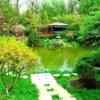 Botanic Garden- Cluj