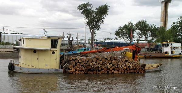 19 El Tigre, Argentina 2014 (103)