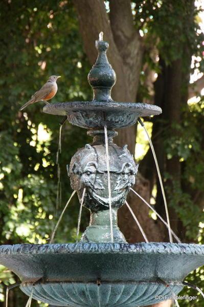 Buenos Aires, Jardin Botanico. Bird drinking at a fountain