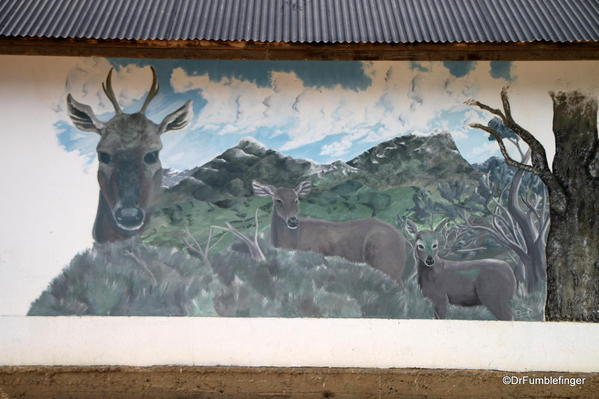 Street art, El Calafate