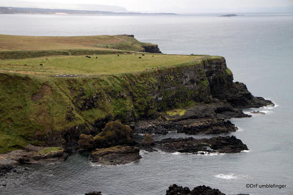 Giant's Causeway viewed from Hilltop