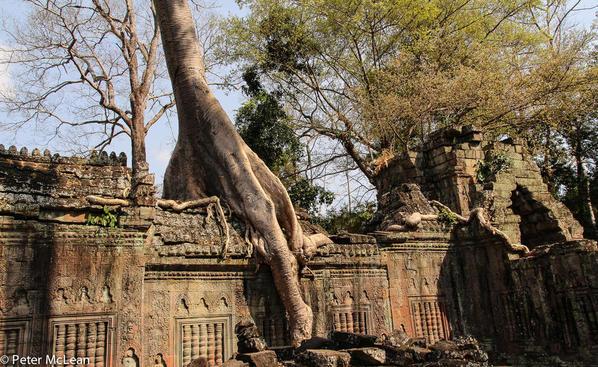 Angkor Temples -8180