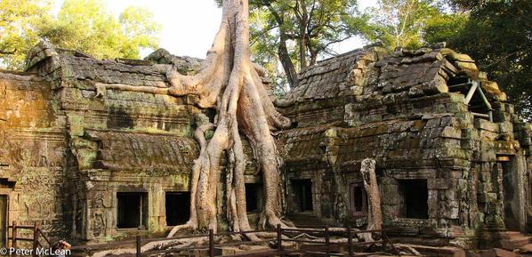 Angkor Temples -8225