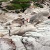 Exploring Alberta's Badland landscapes