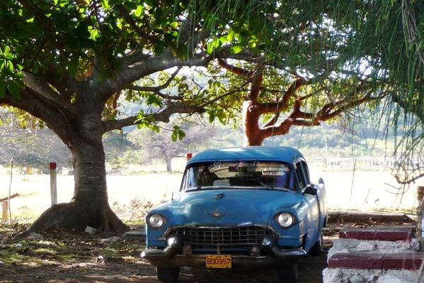 One of countless vintage American cars found in Cuba.