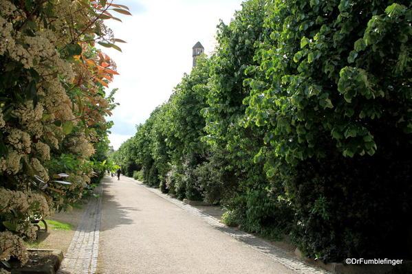 Walkway to Eglise Saint Michel, Fontevraud Abbey