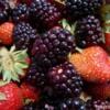 Berry Farm 2