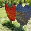 Berry Farm 3