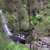 falls in rainforest