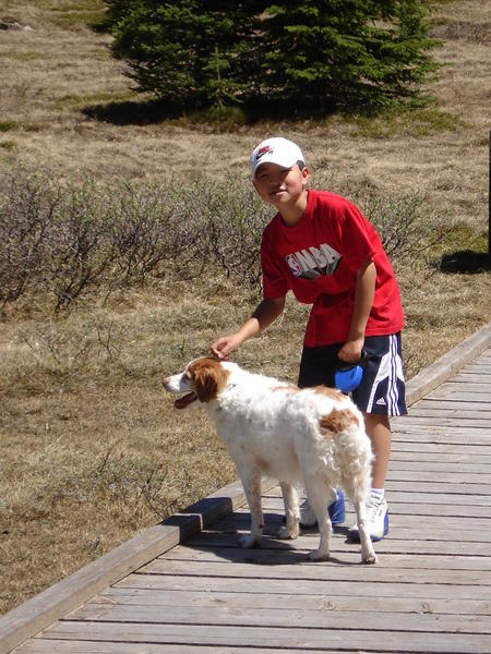 Kananaskis Country 05. Pets are welcome in Canada's parks