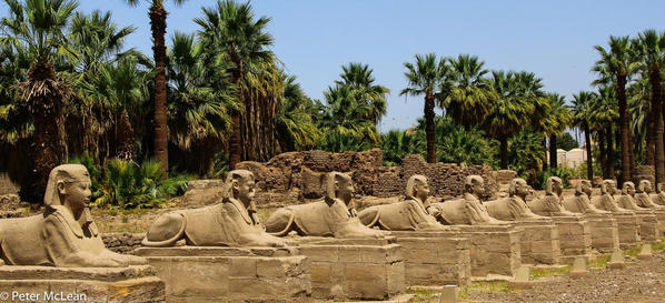 Egypt -0560