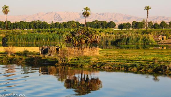 Egypt -0578