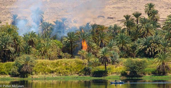 Egypt -0647