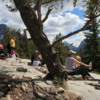 Tunnel Mountain trail,  Banff National Park.  Summit views