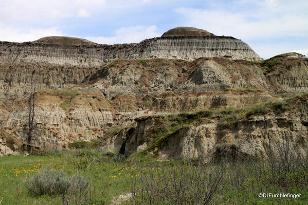 Scenery on the floor of Horseshoe Canyon